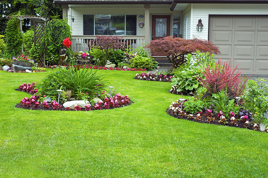 Front yard landscaping and flower beds